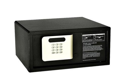 SAFE-_0029_GC-4220-A copy